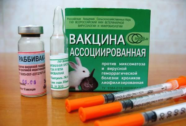 Ассоциированная вакцина