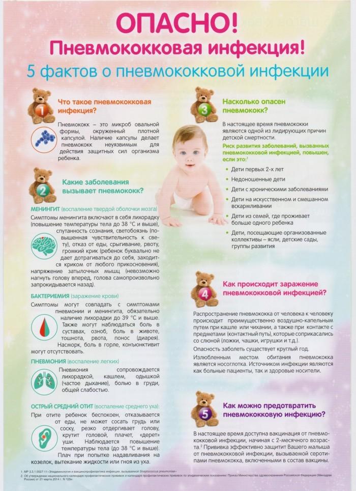 менингококковая инфекция 5 фактов