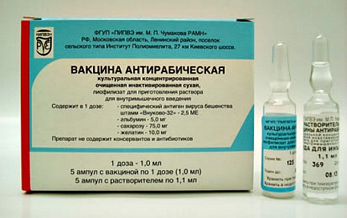 Антирабические Прививки Инструкции