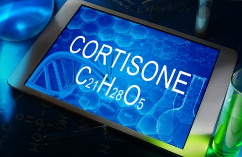Кортизона