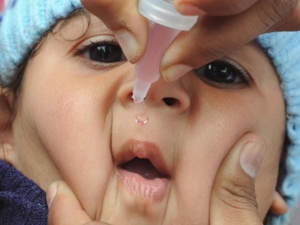 Прививка в 6 месяцев