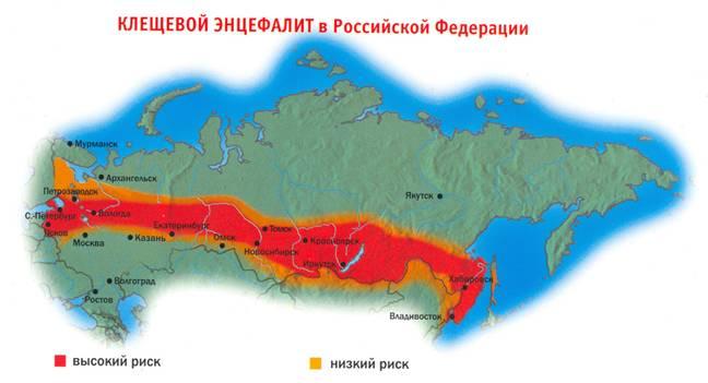 X Клещевой энцефалит в России