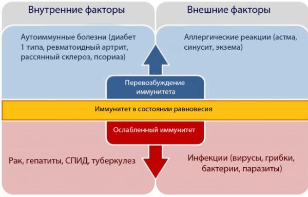 схема факторов, вызывающих рак