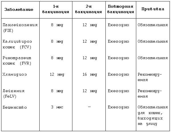 Таблица прививки для котят