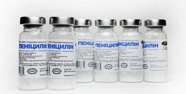 пенициллин инструкция по применению уколы от чего
